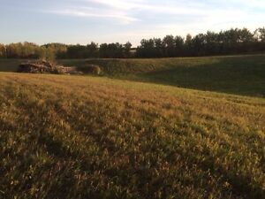 12 Acres for rent-Pasture-Ponoka/farm,cropland,boarding
