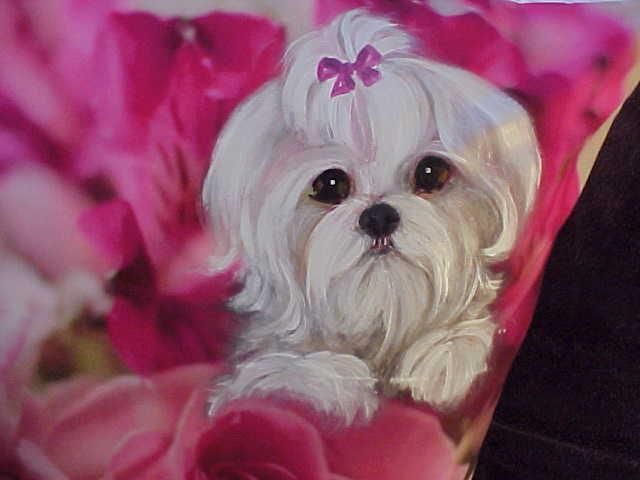 MALTESE HAND PAINTED ROSES PILLOW STUNNING!