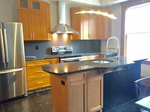 Rare Downtown 1 Bedroom Renovated Apartment