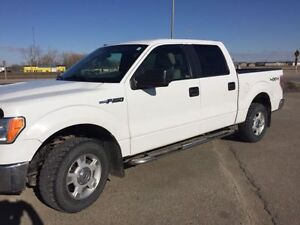 2009 Ford F-150 SuperCrew Pickup Truck (Low Kms)