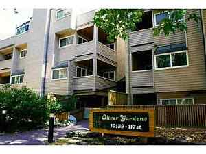 Huge Bachelor Condo Unit Downtown