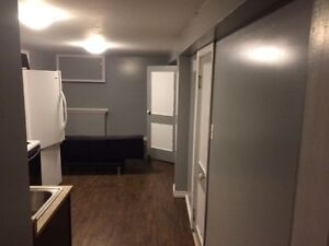 Spacious 1 bedroom apartment near downtown!