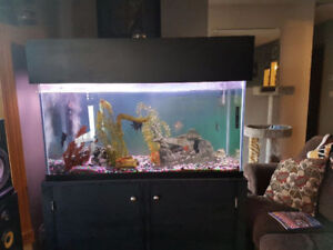 one 90 g large fresh water tank complete