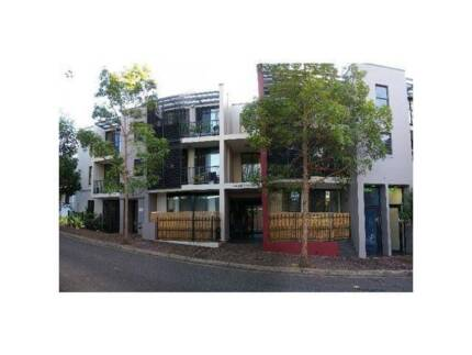 Chippendale Shared Accommodation Chippendale Inner Sydney Preview