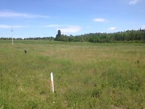 Great Land for Dream Home or Hobby Farm! Perry-NL Island Realty