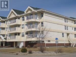 201 729 101st AVE Tisdale, Saskatchewan