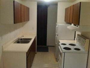 $500.00 FIRST MONTH RENT