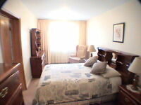 Amazing Hotel Alternative - 2 Bedroom Furnished Suite Toronto