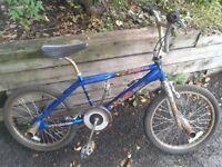 BMX / vélocross