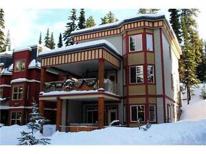 """Falconwood Chalet"", a very well located ski area home"