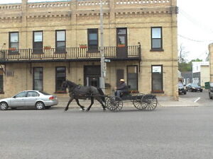 * NEW PRICE* Former Hotel/Bar/Rest/ 20+rooms 12,000' sq Chesley Cambridge Kitchener Area image 9