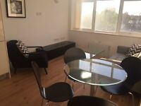 VACANT! - DESIGNER FURNISHED MODERN LUXURY 1 BEDROOM APARTMENT IN SOUTH CROYDON