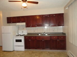 LARGE ONE BEDROOM SUITE Available July 1, 2016
