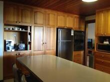 Used Kitchen - Top quality solid Tassie Oak doors + extras Gilmore Tuggeranong Preview
