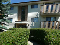 1 Bed,  1 Bath Apt Available Now 5811 58 Ave - 105