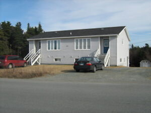 2 Bedroom, Basement Apartment in Torbay