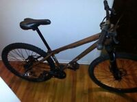 Specialized P2 dirtjumper with upgrades
