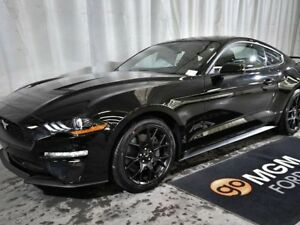 2018 Ford Mustang EcoBoost 2dr Fastback