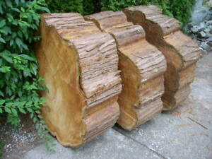 For sale - cedar wood rounds
