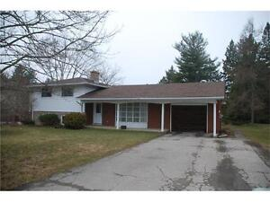 Bungalow with LOADS of Potential on Massive Lot!