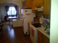 5 bdr apt with backyard ideal for University Students Plateau