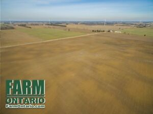 Flat Systematically Tiled Fertilized Land Raleigh/Charing Cross