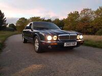 jaguar 40 v8 executive