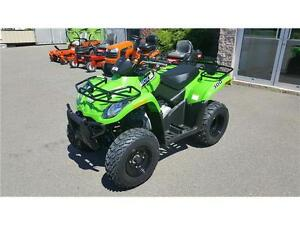 2017 Arctic Cat 300 ONLY $4999