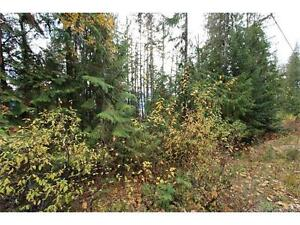Shuswap Building Lot with  Lake View.