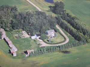 Country Living Close to Tofield - Beautiful Site and Home!