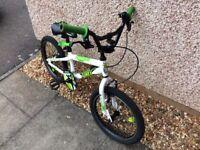 Green / white bike