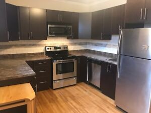 Renovated House in Centretown- Stainless Steel & Hardwood !