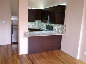 1 Bedroom Apartment downtown Kitchener