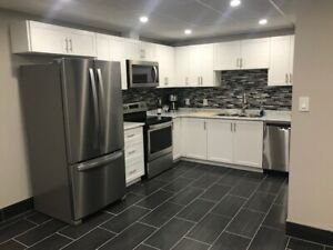 Basement apartment/ bachelor for rent