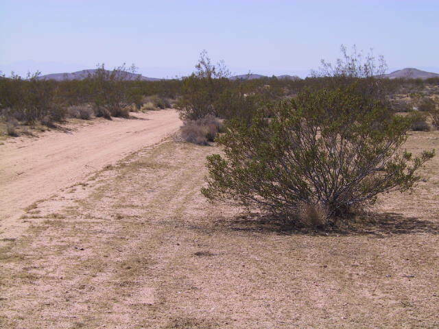 PRICE CHANGE DUE TO PANDEMIC 23.59 ACRES - CALIFORNIA CITY