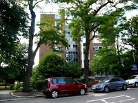 SPACIOUS 2 DOUBLE-BEDROOM APARTMENT IN CRYSTAL PALACE!