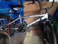 BMX type bike