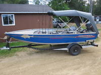 Princecraft Starfish with 40 horsepower, 4 strokes and trailer