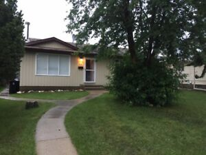 Bright and Beautiful Spruce Grove Bungalow