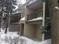 2 Bedroom suite available December 1st in  St.Vital