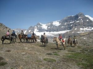 TRAIL RIDING/PACKING/TRAINING CLINIC