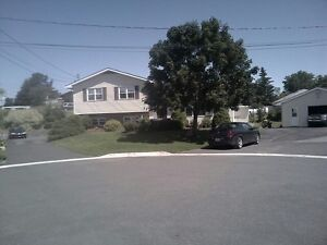 Antigonish Home for Professionals Available