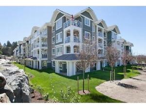 LUXURY 2 BED 2 BATH NEW CONDO FOR RENT IN CLOVERDALE