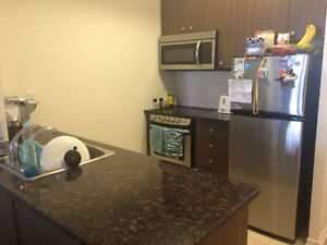 Bathurst / Antibies - 2 Bedroom Condo Townhouse for Rent