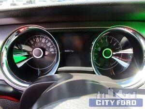 2014 Ford Mustang 2dr Cpe GT Edmonton Edmonton Area image 13