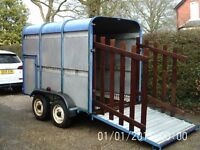 Ifor Williams Horse Box Cattle Pig Trailer Ifor Williams 8ft Long In Great Condition