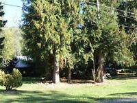 Looking for an affordable house & acreage??