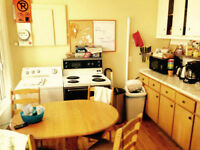 1 room available in Mile End 1st of June