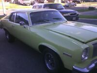 Survivur of the 1970s Muscle/Pony Cars 1974 Omega.
