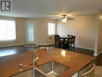 Newly Reno'd, 2bed, 2bath, Close to UofL, pet friendly, heat inc